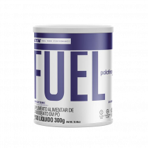 Elite Fuel Palatinose (300g) Gt Nutrition USA